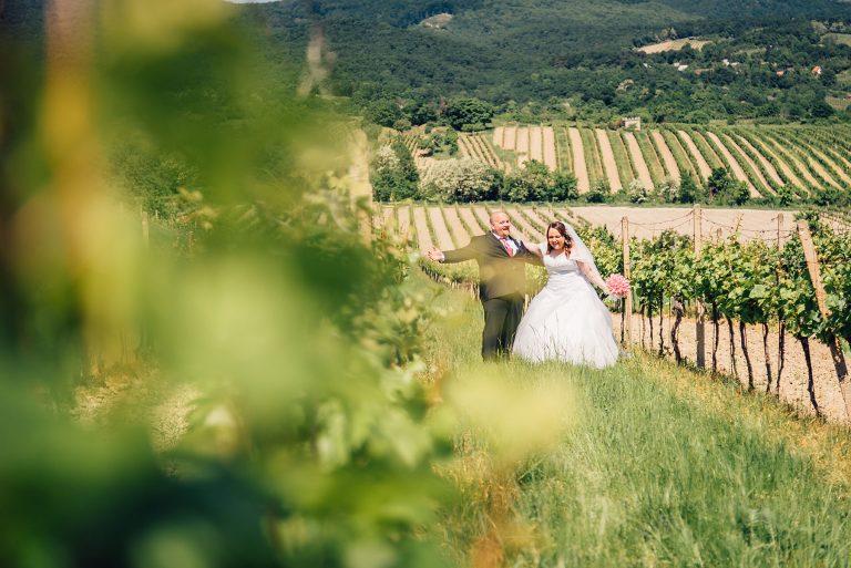 svadba vo vinohradoch modra